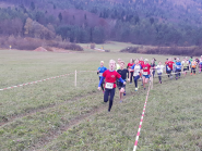 Kärntner Meisterschaften Crosslauf